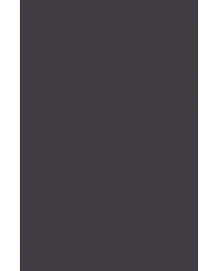 Couleur Paean Black n°294 - Farrow&Ball