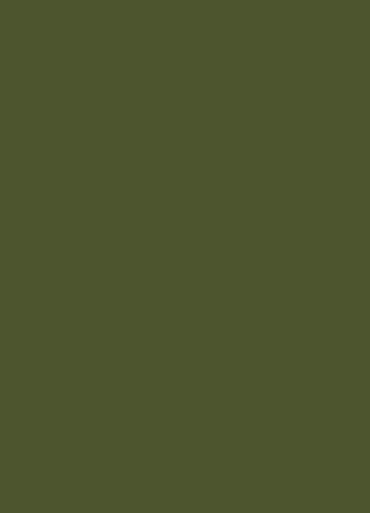 Bancha le nouveau vert profond Farrow&Ball Dame DECO