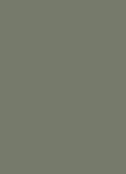 Treron nouveau gris vert subtil Farrow&Ball Dame DECO