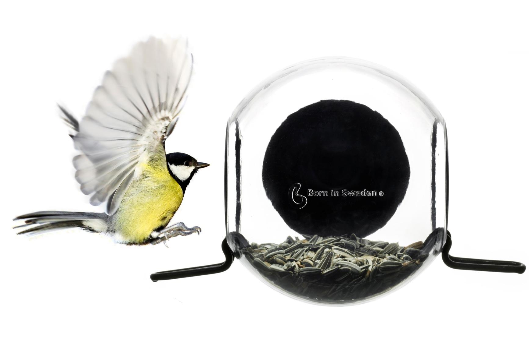 Mangeoire oiseaux