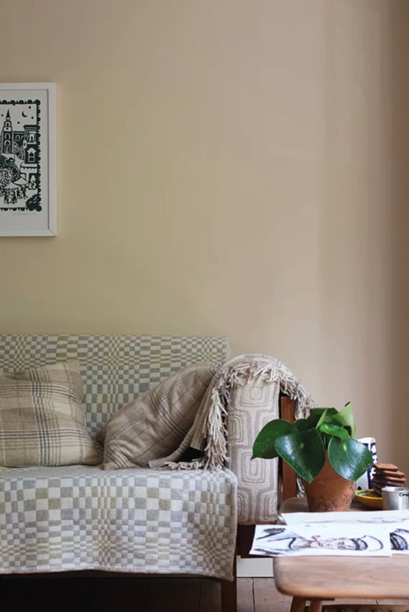 Orange Coloured White W5 Farrow&Ball